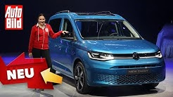 VW Caddy (2020): Neuvorstellung - Hochdachkombi - Info