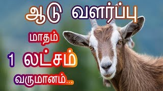 Video Earn 1 lack Goat Farming - ஆடு வளர்ப்பு மாதம் ஒரு லட்சம் ... download MP3, 3GP, MP4, WEBM, AVI, FLV Oktober 2018
