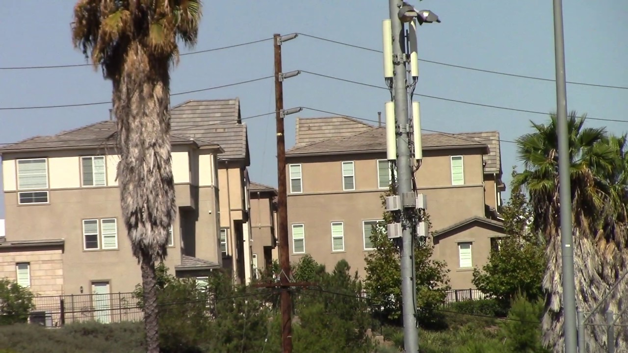 Cell towers are killing the palm trees in California and all of us