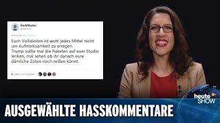 """Hasskommentare 2018: """"Welke ist ein erbärmlicher Systemstricher"""""""