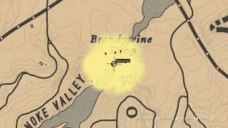 Карта сокровищ Водопад в Red Dead Redemption 2 Online PC