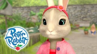Peter Rabbit - Helpful Lily   Practical Pocket   Cartoons for Kids