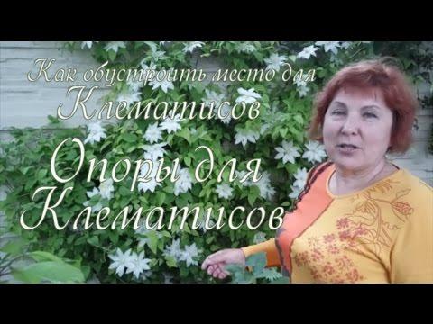 Как сделать ранункулюс из фоамирана - мастер-класс - YouTube 27