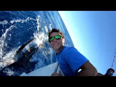 Tuna/Marlin Fishing In The Gulf Of Mexico Off The Coast Of Alabama.