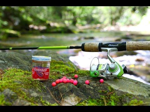 Fishing DEEP In The Mountains For Beautiful Trout!!! | Jiggin' With Jordan