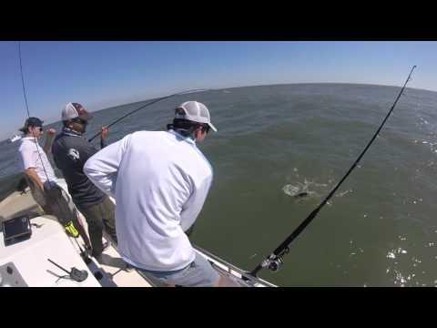 Fishing For Sheepshead in Galveston,Tx