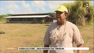 Agriculture : des femmes de terrain