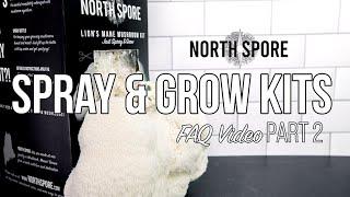 North Spore Spray & Grow Mushroom Kits   Harvesting and Cooking Your Mushrooms   FAQ Part 2