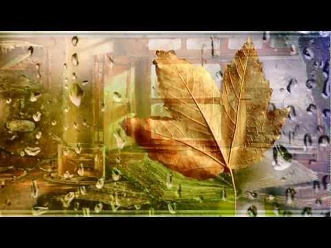 Песня Олег Митяев - Дует ветер в mp3 256kbps