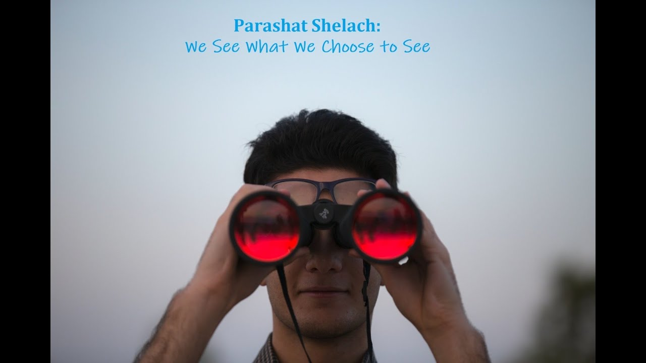Parashat Shelach: We See What We Choose To See