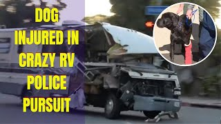 Dog jumps out of RV during High Speed Chase