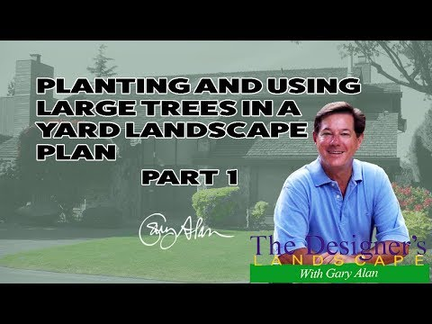 How to design and install a landscape plan with Large Trees