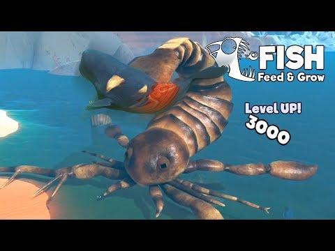 แมงป่องทะเล!! ยุคสูญพันธุ์ เลเวล 3000+   Fish Feed and Grow #47