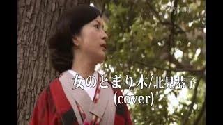 北見恭子 - 女のとまり木