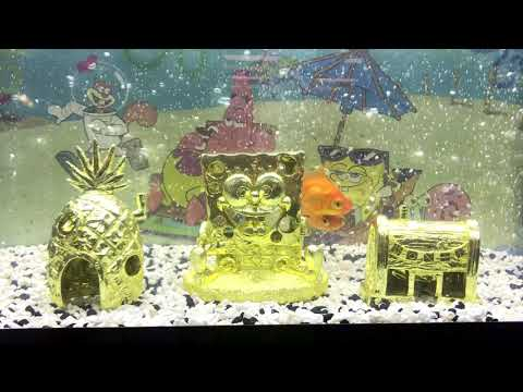 Golden Edition Spongebob Squarepants Ornaments From Penn-Plax