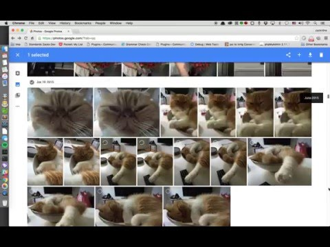 Google Photos - How To Delete All of them At Once!