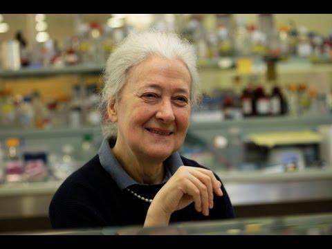 Melitta Schachner - Spinal Cord Regeneration