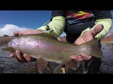 SubtleTakes, Fly Fishing The Arkansas River - Spring Awakening