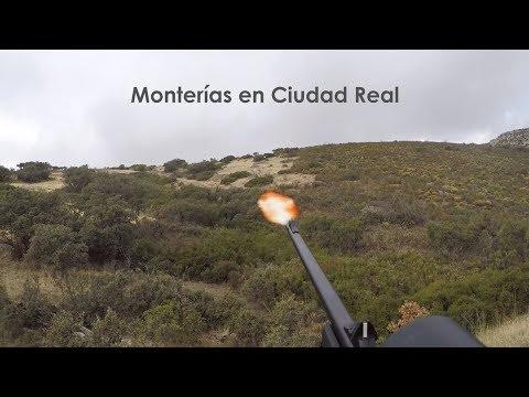 Monterías en Ciudad Real | Videos de Caza