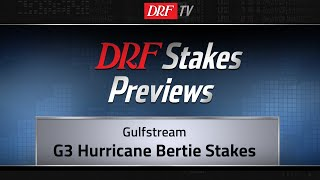 Hurricane Bertie Stakes 2019 Preview
