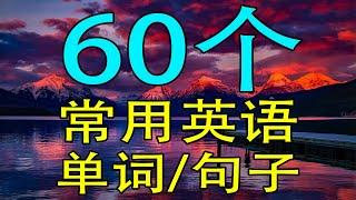 【学英语从零开始】60个常用英语单词/英语短语 (学英语初级频道)