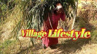 Village Lifestyle in Nepal   Rural Life Village in Nepal