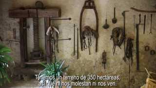 The top rated hotels in Mallorca (part II): Hotels close to nature (english subtitles)