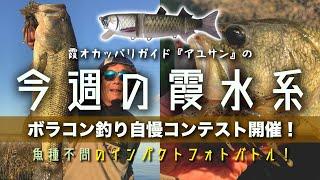 魚種不問のボラコン150釣り自慢コンテスト開催!『霞オカッパリガイド・アユサンの今週の霞水系』