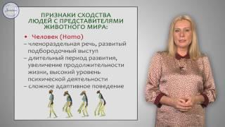 Биология 8 Место человека в системе органического мира  Человек — биологическое
