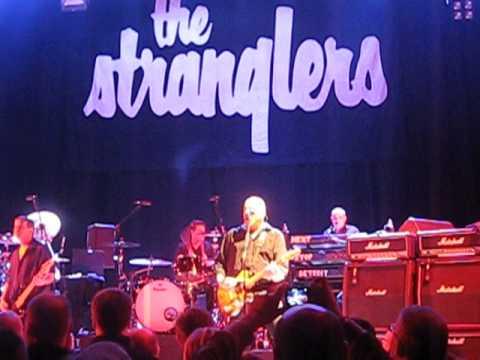 The Stranglers - TANK - croydon fairfield halls 31/3/2013