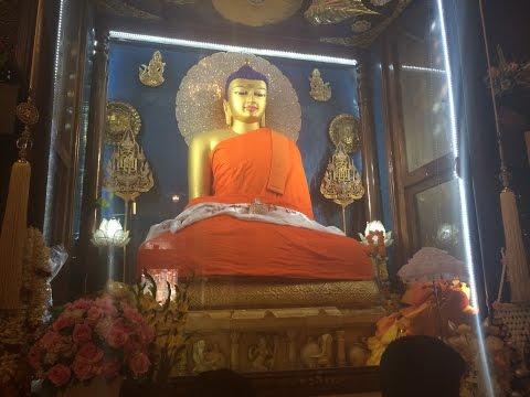 India Trip 2014: Buddhist Pilgrimage 2/4 Bodhgaya, India