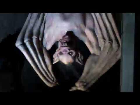 vampire-bat-attack!