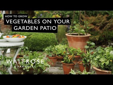 Matt James's Summer Garden | The Edible Patio | Waitrose