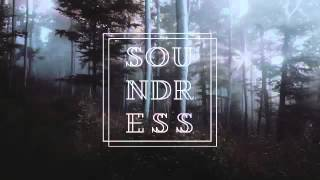 Soundress Label Mix Autumn 2015 • Indie • House • Nu Disco