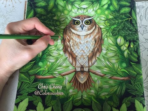 - LEAVES DRAWING / COLORING WITH COLORED PENCILS SECRET GARDEN - YouTube