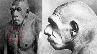 अगर आप हनुमानजी को नही मानते तो ये विडियो मत देखिये ! Hidden Fact Of Lord Hanuman !
