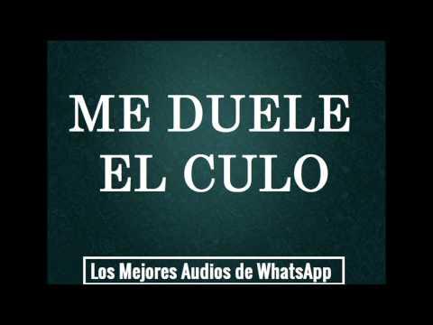 ME DUELE EL CULO - Los Mejores Audios de WhatsApp