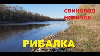 Рыбалка на реке Десна Свиноводство
