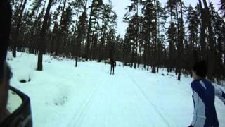Falun/Borlänge loppet 2013 Dala XC Ski Team