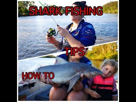 BULL SHARK Tips And Tricks