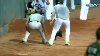 ПРИКОЛ кот выбежал на стадион во время игры в бейсбол