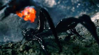 Venom Arrives on Earth - Meteor Scene - Spider-Man 3 (2007) Movie CLIP HD