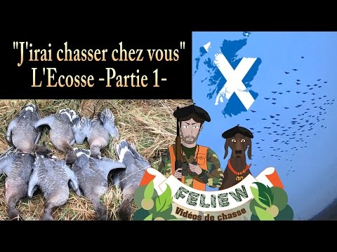 J'irai chasser chez vous: l'Ecosse, 1ère partie : chasse aux oies, bécasses et faisans!
