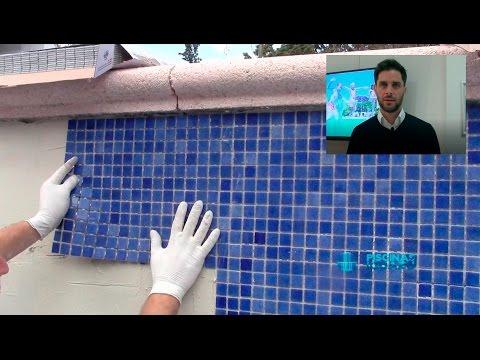 C mo colocar gresite para piscinas doovi for Colocar gresite piscina