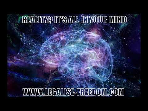 Bernardo Kastrup - Reality? It's All In Your Mind