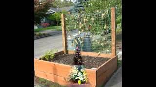 Box Garden Ideas