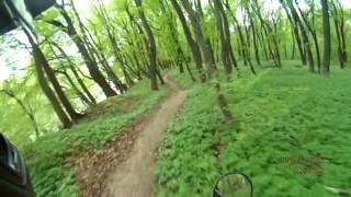 Stels 400 Enduro поездка по лесу и окрестностям