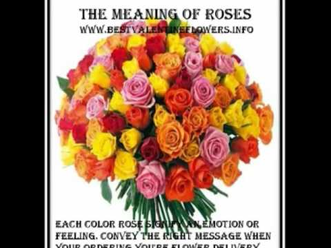 rose meanings send valentine roses - The Meaning Of Valentine