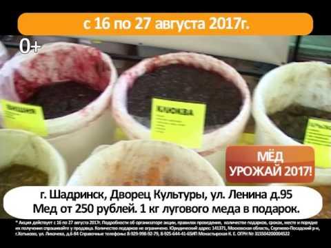 Шадринск с 16 по 27 августа 2017г