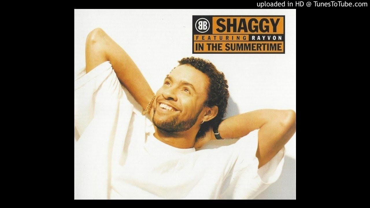 Shaggy Featuring Rayvon In The Summertime Original 7 Sting Shaggy Remix Youtube